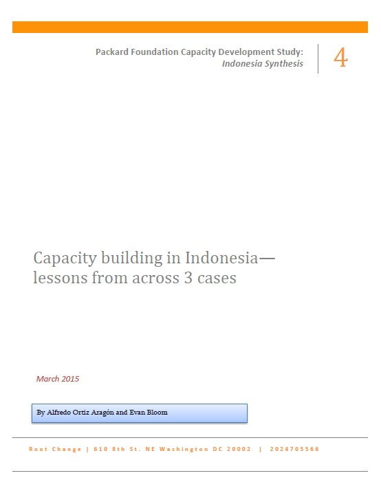 Capacity Building in Indonesia Report Cover
