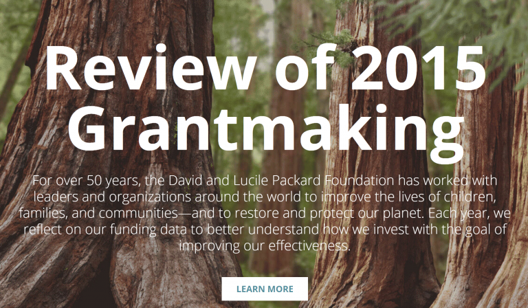 Review of 2015 Grantmaking